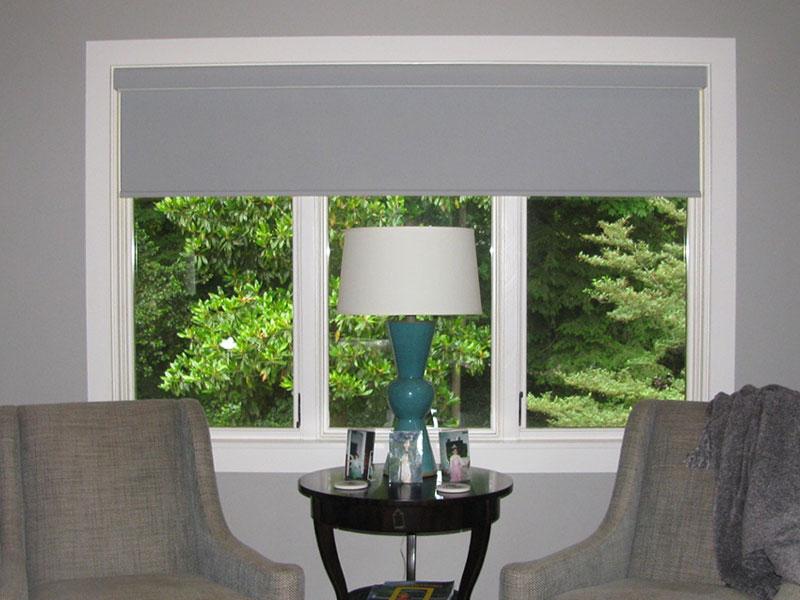 Living room shades
